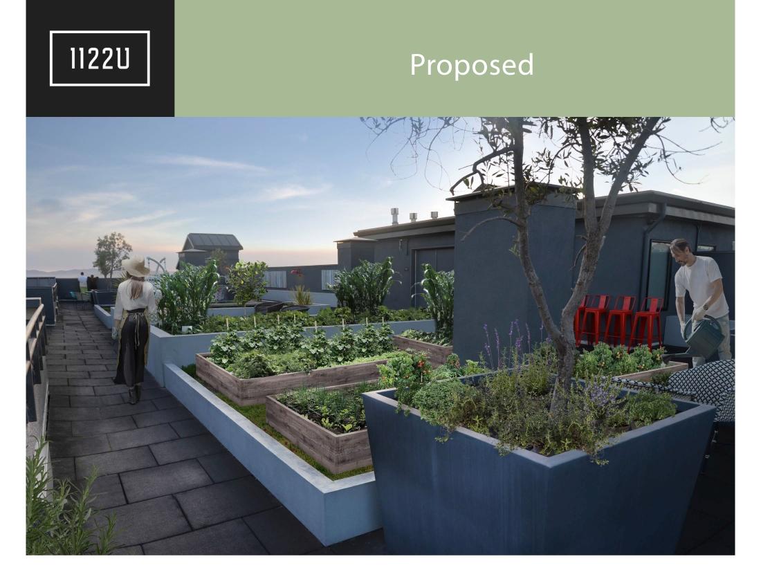 1122U Community Gardens Draft 200422 7 copy