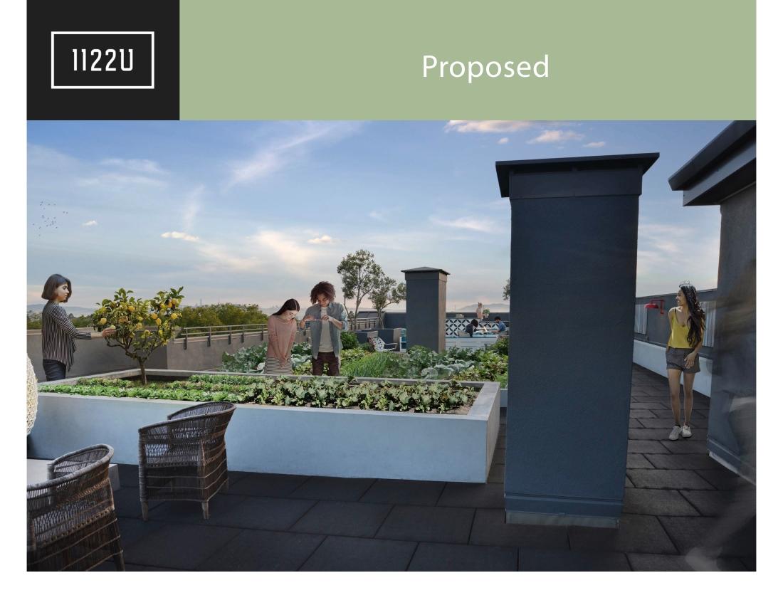 1122U Community Gardens Draft 200422 9 copy
